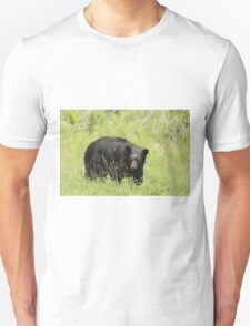 Black Bear in a pasture T-Shirt