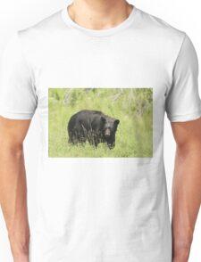 Black Bear in a pasture Unisex T-Shirt