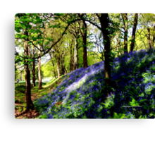Bank of Bluebells Canvas Print