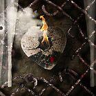 Stone Cold by Alex Preiss