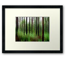 Eucalypts and Bracken Framed Print