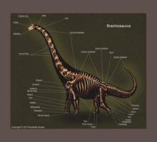 Brachiosaurus Skeleton Study Kids Clothes