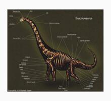 Brachiosaurus Skeleton Study One Piece - Short Sleeve