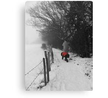 The Dog in the Red Coat Canvas Print