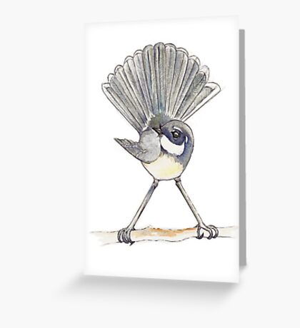Grey Fantail on white background Greeting Card