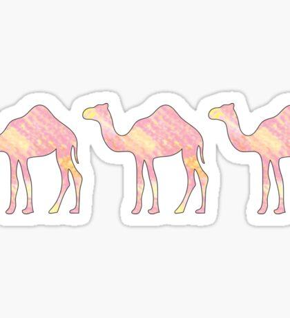 Pink Tie Dye Camels Sticker