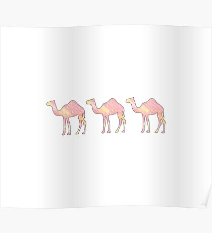 Pink Tie Dye Camels Poster