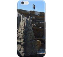 Penguin Pen iPhone Case/Skin