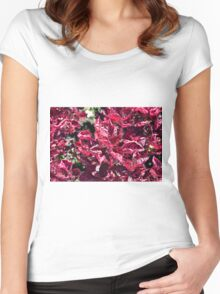 Texture with pink purple leaves. Women's Fitted Scoop T-Shirt