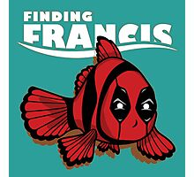 find francis Photographic Print