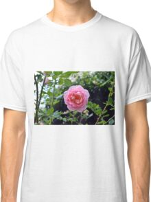 Pink rose on a natural green leaves background. Classic T-Shirt