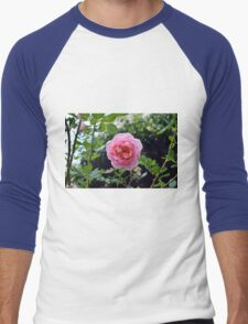 Pink rose on a natural green leaves background. Men's Baseball ¾ T-Shirt