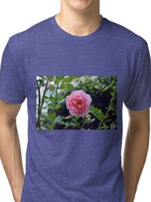 Pink rose on a natural green leaves background. Tri-blend T-Shirt