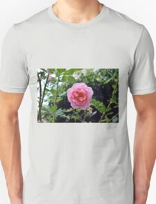 Pink rose on a natural green leaves background. Unisex T-Shirt