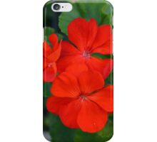Red powerful color flower and green leaves background. iPhone Case/Skin