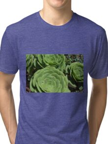 Pattern with succulents. Tri-blend T-Shirt