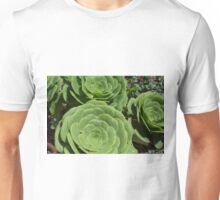 Pattern with succulents. Unisex T-Shirt