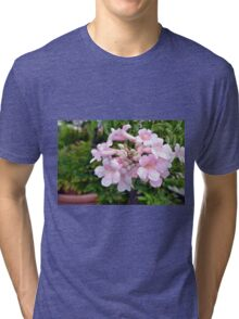 Pink flowers in pots. Tri-blend T-Shirt