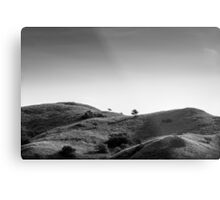 Trees and Hills Metal Print