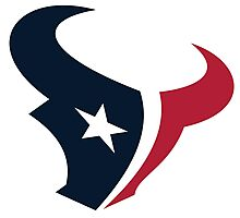 Houston Texans Fan Photographic Print
