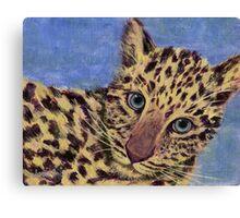 Baby Leopard Canvas Print