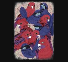 Wrens and Rosellas Delight! One Piece - Long Sleeve