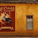 Old West Window by Larry Costales