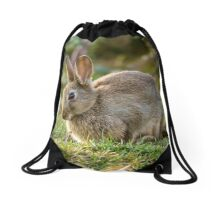 Cute Wild Leveret Portrait Drawstring Bag