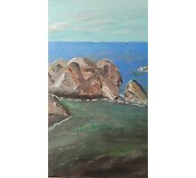 Oil painting Photographic Print