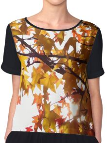 autumn Chiffon Top
