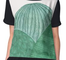 Dance Upon The Mountains Chiffon Top