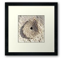 An ants home is its castle Framed Print