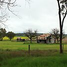 On the Way Home From Quirindi by Carol James