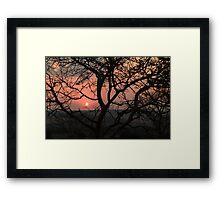 sunset with silhouetted tree Framed Print