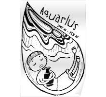 Zodiac Signs: Aquarius Poster