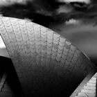 Sails 1, Sydney Opera House by Andrew Wilson