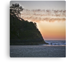 salmon sunset Canvas Print