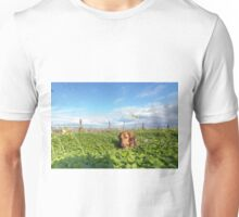 Alfie the Dachshund in clover Unisex T-Shirt