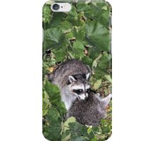 PLAYING IN THE VINES iPhone Case/Skin