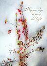 Red Barberries Holiday Card by LouiseK