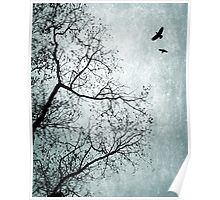 Design 24 Bird Tree Blue Poster