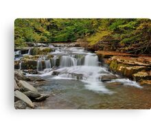 The Roar of Falling Water Canvas Print