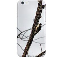 SOME MORNING WOOD iPhone Case/Skin