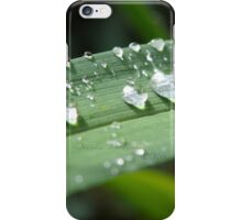 Rain on a Blade of Grass iPhone Case/Skin