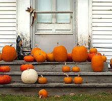Pumpkin Harvest by Susan R. Wacker