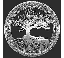 Celtic Tree of Life, Yggdrasil [Silver] Photographic Print