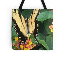 Eastern Tiger Swallowtail (Glaucus) AKA-Tiger Swallowtail Tote Bag