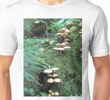 Where Fairies Play Unisex T-Shirt