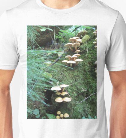 Where Fairies Play Unisex T-Shirt