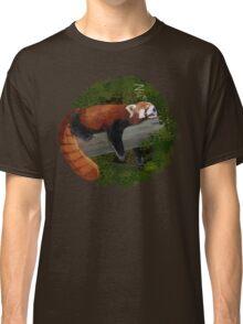 Sleepy Red Panda  Classic T-Shirt